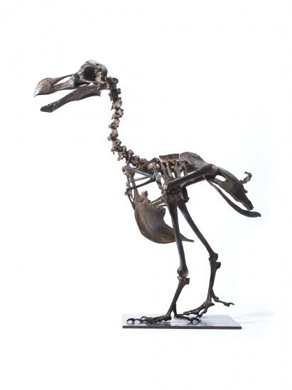 EveryObjectTellsAStory_Bronze_Dodo_Skeleton_073-411x550