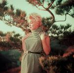 1954-PalmSprings-HarryCrocker_home-by_ted_baron-striped-011-1