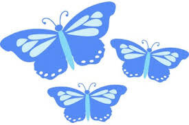 GAMES GINNY BUTTERFLY