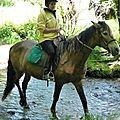 balade equestre gastronomique à La Lucerne d'Outremer (81)