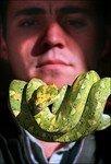 python_vert_arbore