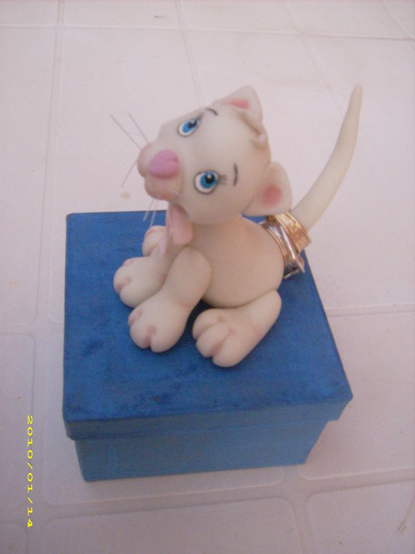 chat baguier