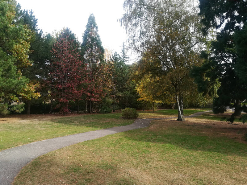 parc Labesse, 26 oct 2018 (19)