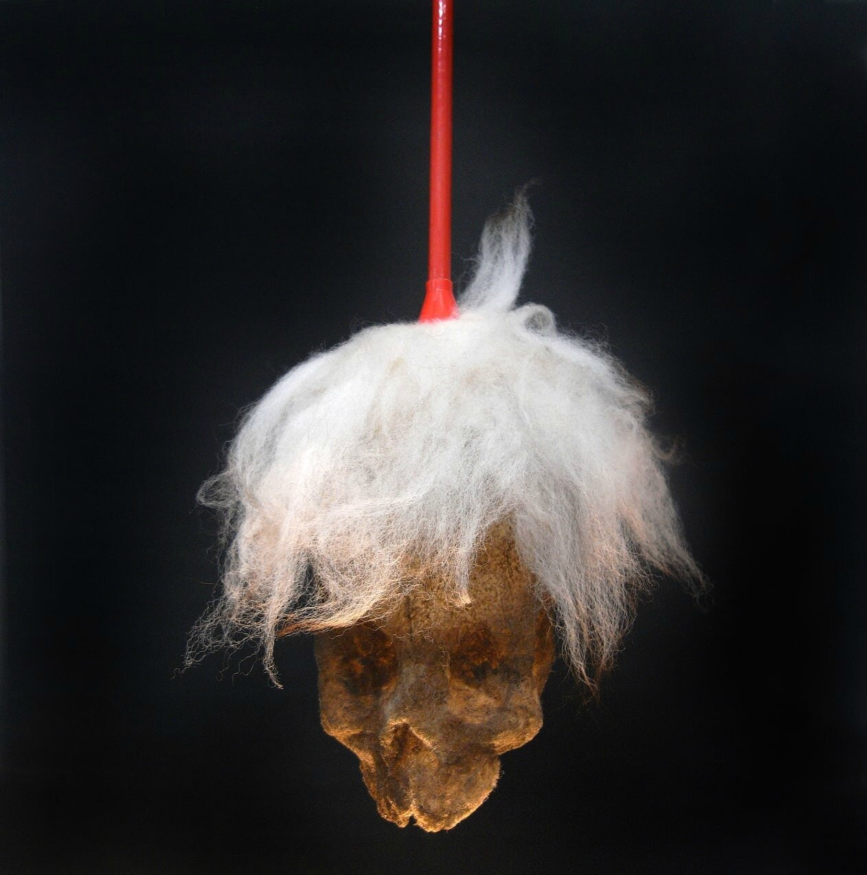 Paul Hazelton's Fright Wig, made from a duster and glued household dust