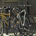 En france, le vélo est encore loin d'être un style de vie !