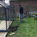 Jardins et jardinage...
