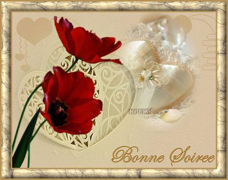 5bonne_soiree_8078c8