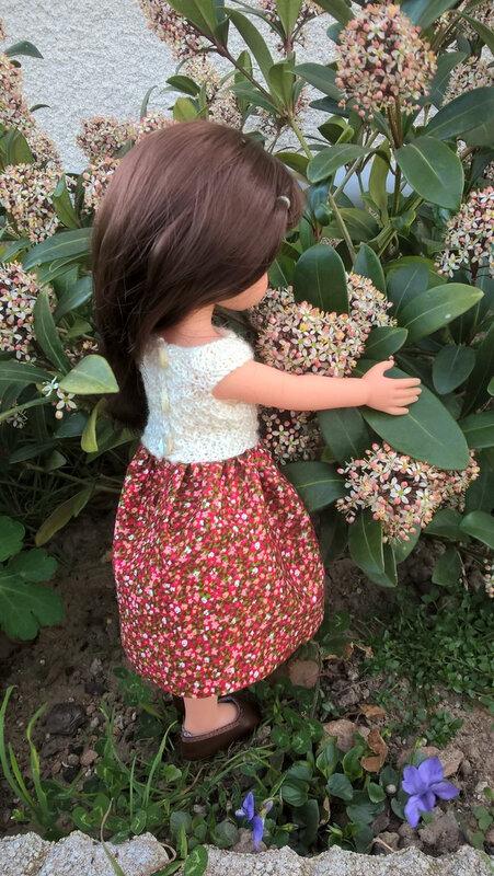 20200319 Myrtille au jardin le skimmia
