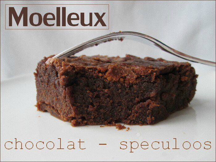 moelleux chocolat - speculoos 1