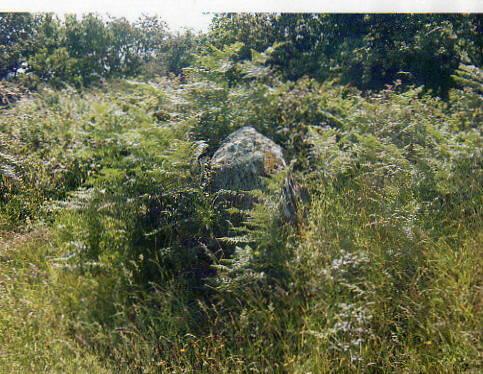 Menhir du Bodérin 4-D-