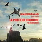 ob_951aed_anteketborka-photo-dimanche-small