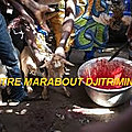 Grand maitre marabout compétent djitrimin rituels de retour affectif rapide