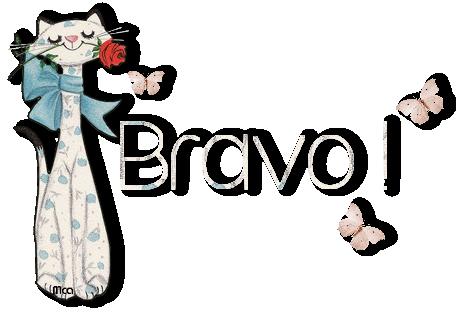 Bravo 13