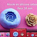 Mes moules fleurs en silicone : vidéo