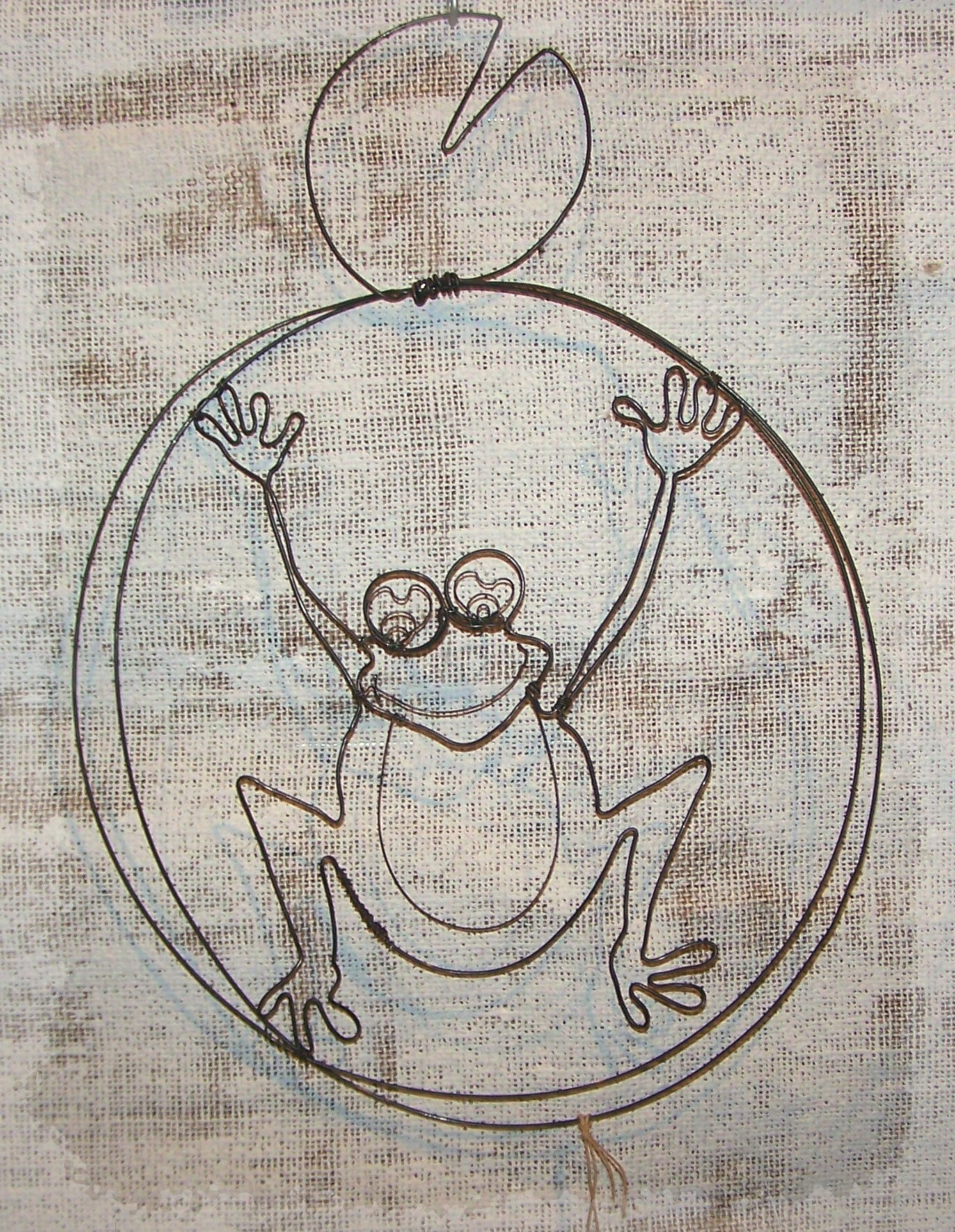 grenouille fil de fer