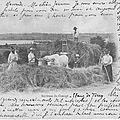 1915-01-29 blé e