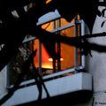 Fenêtre sur jardin - par v (11/20)