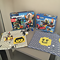 Birthday gift lego vs playmobil