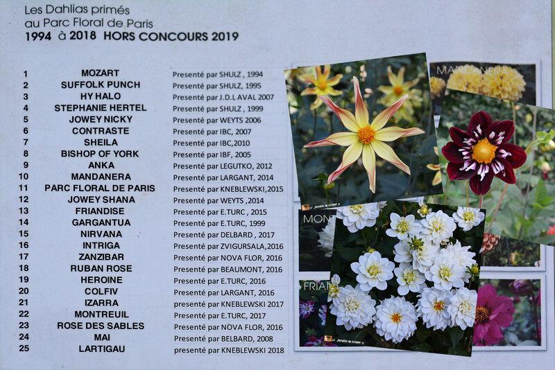 Dahlias-primés-1994-2018