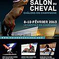 Salon du cheval au capitole de châlons en champagne du 8 au 10 février 2013