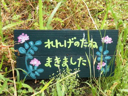 Japon_2010_2_1132