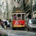 Trams (1)