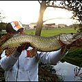 Manipulation des poissons au bord de l'eau