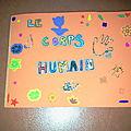 lapbook_corps humain