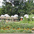 Balade dans les jardins du parc de wesserling