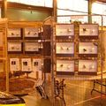 EXPO CANOHES 2010