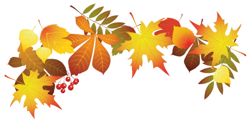 autumn-colours-clipart-6
