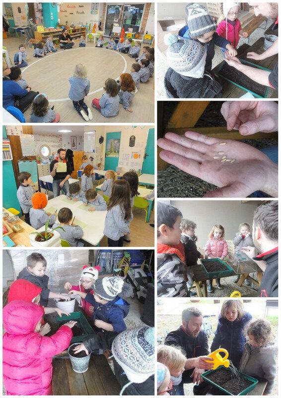 Permaculture à l'école: semis, préparation du potager...