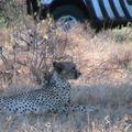2010-02-23 Samburu (159)