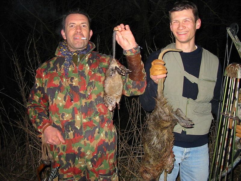 Ragondin et rat musqué avec Stéphane