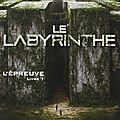 Labyrinthe, l'épreuve, james dashner