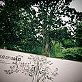 Nantes #2 du jardin des plantes à la tour st pierre