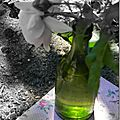 Windows-Live-Writer/jardin-charme_12604/DSCN0674_thumb