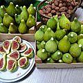 figues longues d'aout - www.passionpotager.canalblog.com