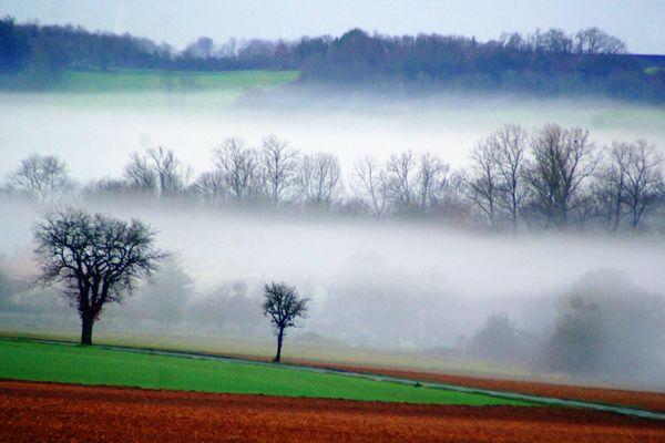 Viville brouillard (2)