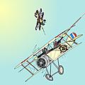 2014 (13) grenouille volante