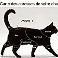 Windows-Live-Writer/fcae1d154f78_E503/CARESSE CHAT_thumb