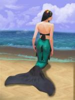 nageoire sujet d'examen Laureen la sirène