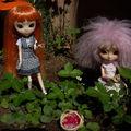 Tangerine Faylinn gardening