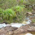 rivière en petites cascades