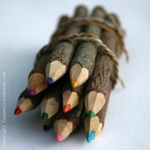 les-crayons-de-couleur-branche-d-arbre