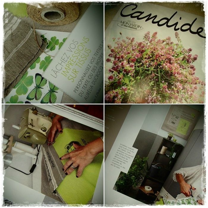 Candide 2013