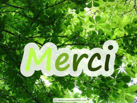 merci-vert