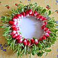 64 radis Bamba avec voile de forçage