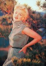 1954-PalmSprings-HarryCrocker_home-by_ted_baron-striped-010-2