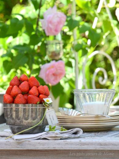fraise_054